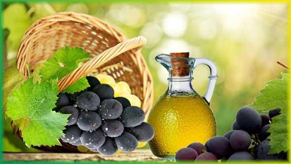 Масло из косточек винограда – «эликсир молодости»